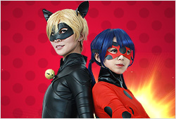 Ladybug and Black Cat