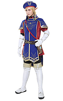 The Legend of Zelda Breath of the Wild Royal Guard Uniform Link Cosplay Kostüm Set