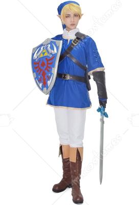 The Legend of Zelda Link Blue Cosplay Costume  sc 1 st  Miccostumes.com & The Legend of Zelda Link Blue Cosplay Costume For Sale