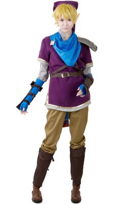 Zelda Hyrule Warriors Link Purple Cosplay Costumes