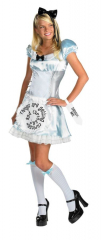Alice in Wonderland Tween and Teen Costume