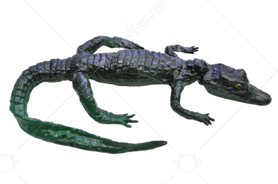 Alligator Regular