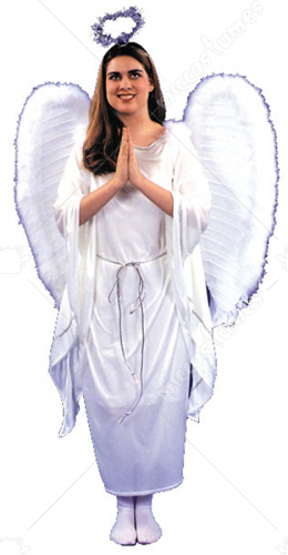 Heavenly Angel Dress