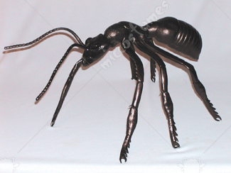 Ant Giant Latex