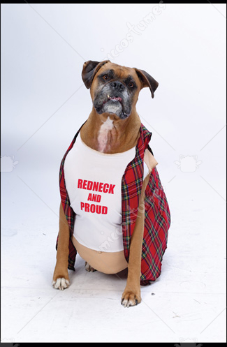 Big Dog Redneck Costume