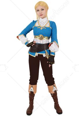 Breath of the Wild Princess Zelda Cosplay Costume The Legend of Zelda