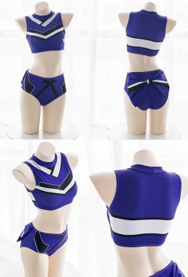 [Free US Economy Shipping] Fate/Grand Order Tamamo no Mae Two-piece Swimsuit Swimwear Cosplay Costume