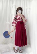Yagasuri Arrow Feathers Japanese Style Improved Kimono Haori Long Pleated Skirt Costume