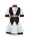 Steins Gate Faris Nyannyan Rumiho Akiha Maid Dress Cosplay Costume