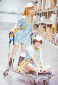 Cells at Work Platelet Female Cosplay Costume Outfit
