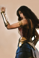 DC Comics Wonder Woman Diana Prince Cosplay Costume including Shoes