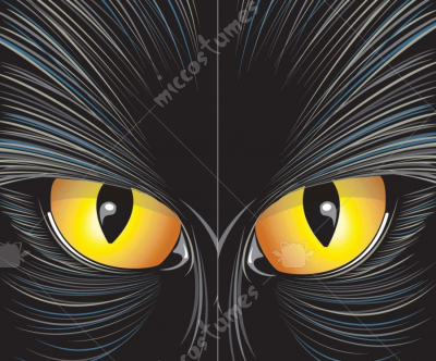 Catrageous Cat Eyes