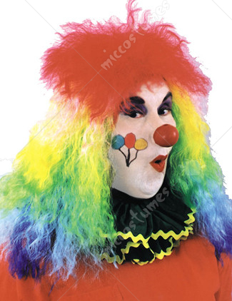 Clown Rainbow Wig