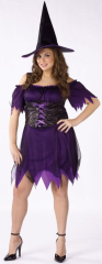 Superstition Vixen Plus Adult Costume