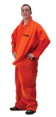 Department Of Erections Adult Costume