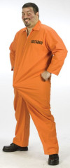 Department Of Erections Plus Size Adult Costume