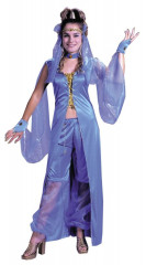 Dreamy Genie Adult Costume