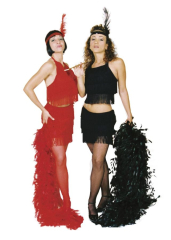 Flapper Sexy Costume