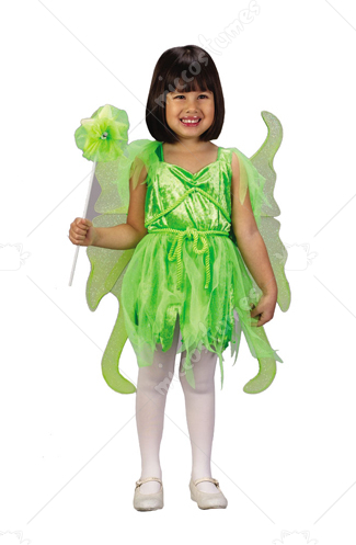 Fairy Neverland Toddler Costume