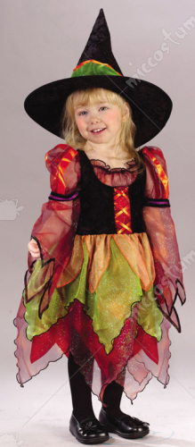 Fairy Witch Toddler Costume
