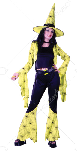 Groovy Witch Adult Costume