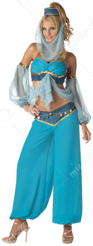Harems Jewel Belly Dancer Costume