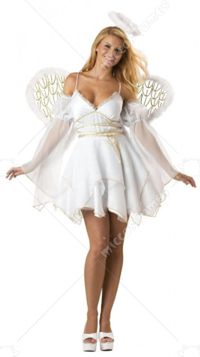 Heaven Sent Adult Costume