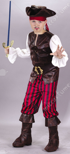 High Seas Buccaneer Child Costume