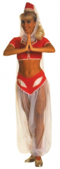 I Dream of Jeannie Costume