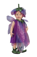 Infant Sugar Plum Fairy Costume