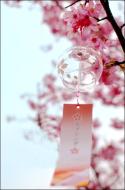 Japanese Glass Wind Chime Sakura