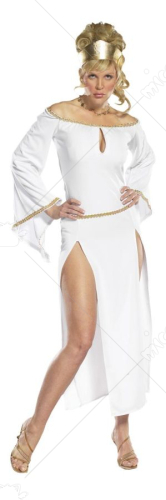 Lady of Rome Costume