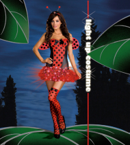 Light Me Up Ladybug Adult Costume