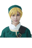 The Legend of Zelda Link Cosplay Wig