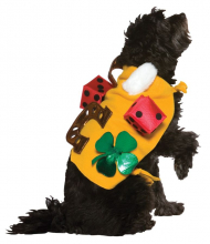 Lucky Dog Costume
