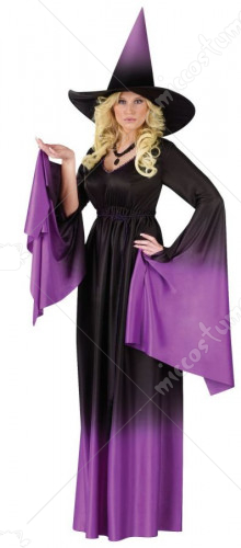 Magical Witch Adult Costume