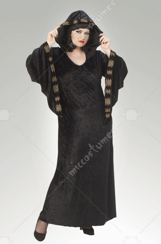 Midnight Priestess Full Cut Adult Costume
