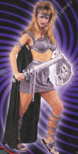 Millenium Warrior Costume