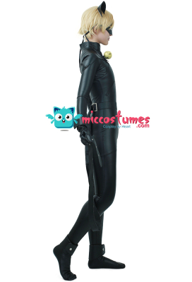 Agreste Black Cat Cosplay Costume