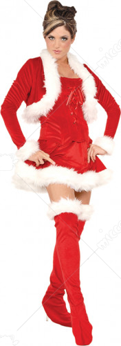 Ms Claus Costume
