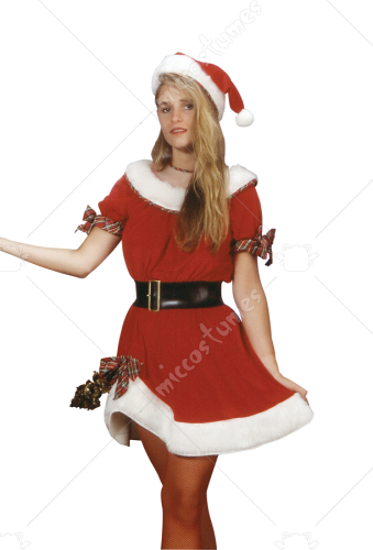 Ms Santa Adult Standard Costume