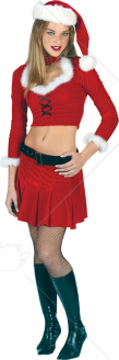 Ms Sexy Santa Adult Costume