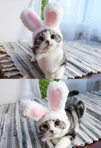 Plush Bunny Ears Pet Headband Rabbit Hat for Cat Small Dogs Easter Party Halloween Cosplay Costume Accessory Headwear