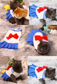 Sailor Moon Costume de Cosplay Uniforme JK pour Chat et Petit Chien Blue