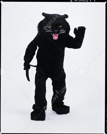 Panther Black Mascot Costume