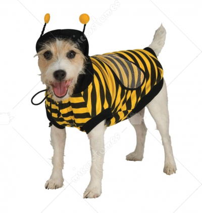 Pet Bumblebee Costume