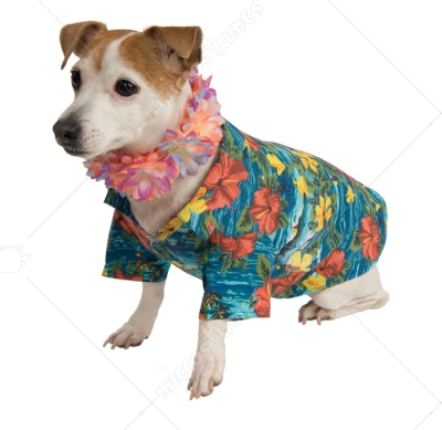 Pet Luau Costume