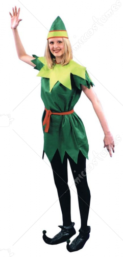 Peter Pan Lady 1 Size Costume