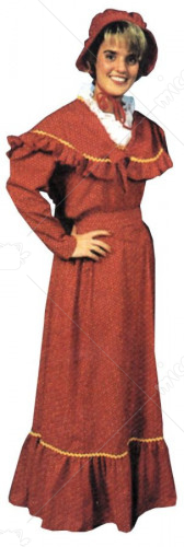 Pioneer Dress Adult Costume