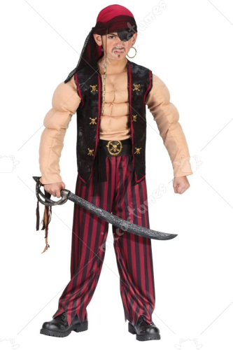 Pirate Muscle Costume